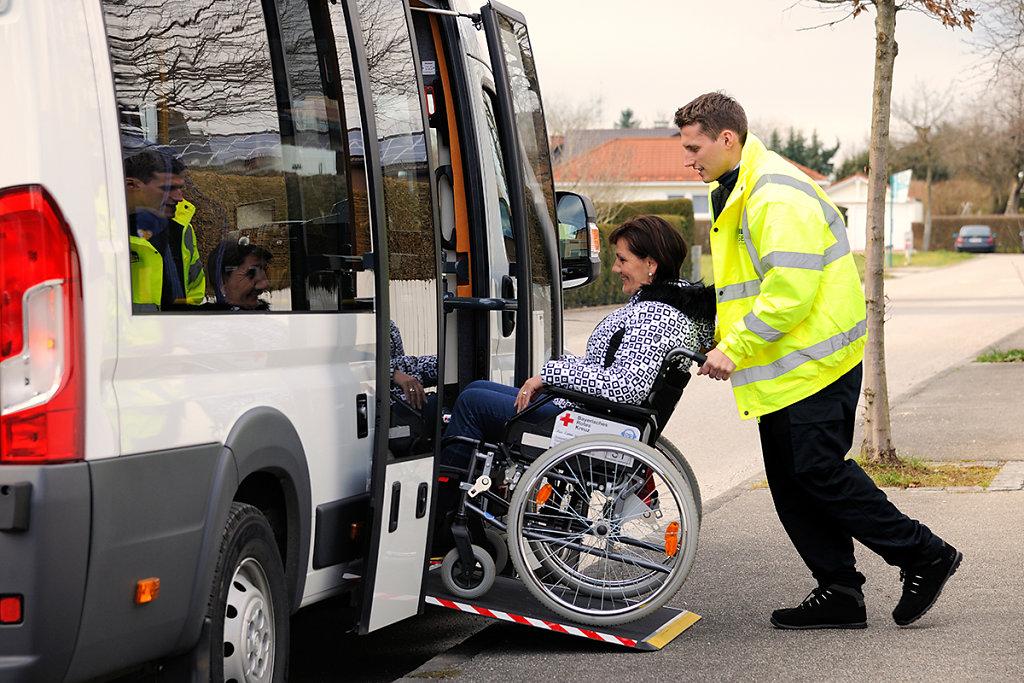 Hogger-Bus-1425.jpg